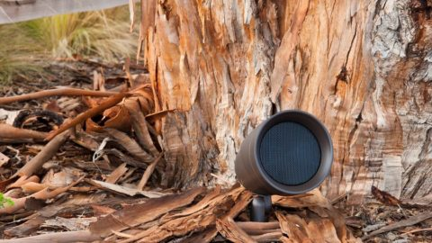 How to Make the Most of an Outdoor Sound System This Fall
